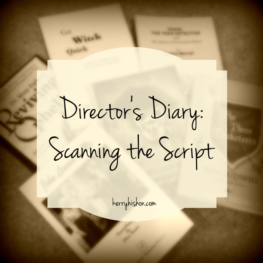 Director's Diary: Scanning the Script